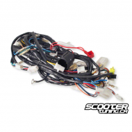 Complete Wiring Harness PGO Bigmax