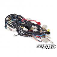 Complete Wiring Harness PGO Bigmax