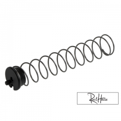 Polini CP replacement Spring & Holder