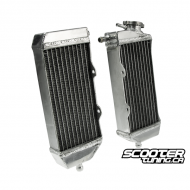 Custom Radiator set (Universal)