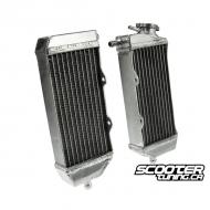 Custom Radiator set (Universal)