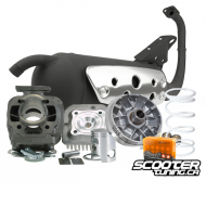 Engine Package Malossi Sport 70cc (Pre-Bug Zuma)
