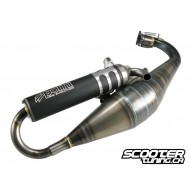 Exhaust system Polini Evolution 2010