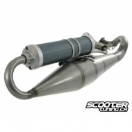Exhaust system Malossi MHR
