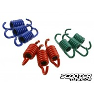 Clutch springs Malossi