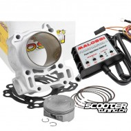 Cylinder kit Malossi I-Tech 166cc