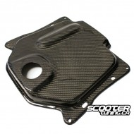 Gas Tank Cover NCY Carbon