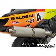Exhaust Malossi Maxi Wild Lion