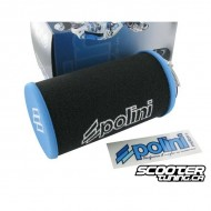 Airfilter Polini Evolution Long (39mm)