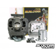 Cylinder kit Malossi SPORT 50cc 10mm