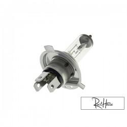 Bulb HS1-PX43T (12V-35/35W)