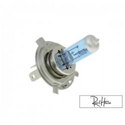 Bulb Xenon halogen HS1-PX43T (12V-35/35W)