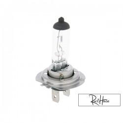 Bulb halogen H7 (12V-55W) PX26d