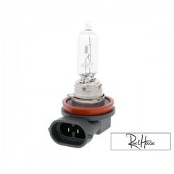 Bulb halogen H11 (12V-55W) PGJ19-2