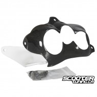Front Light Cover Zoomania Carbon Honda Ruckus