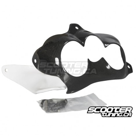 Front Light Cover Zoomania Carbon