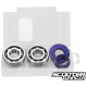 Crankshaft Bearings Polini HQ