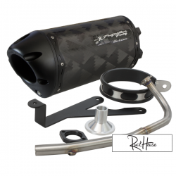 Exhaust Two Brothers Racing 10'' Black series Ruckus (Carbon)
