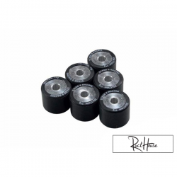 Variator roller weights Stage6 HQ 20x17mm