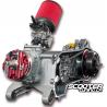 Complete Engine Malossi C-One 70cc (Piaggio 12-13'' Wheel)