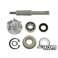 Water Pump Repair Kit (SH150)