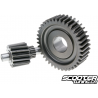 Secondary Gear Polini 15/39 (SH150)