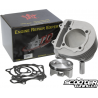 Ceramic Cylinder Taida 232cc Forged Piston (67mm)