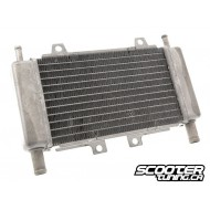 Radiator Motoforce RACING