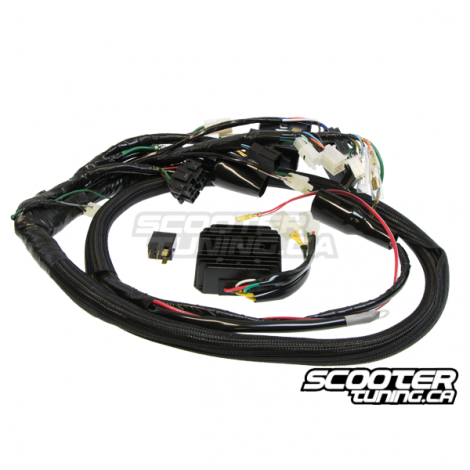 Engine Swap Harness Makoa Scooter Honda Ruckus GY6
