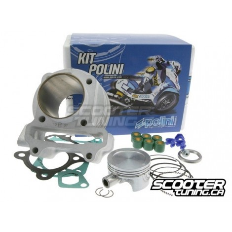 cylinder kit polini sport 80cc gy6 50cc 139qmb qma distribution scootertuning. Black Bedroom Furniture Sets. Home Design Ideas