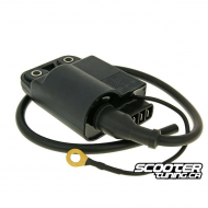 Ingition Coil with CDI unit (Aprilia SR50 Piaggio)