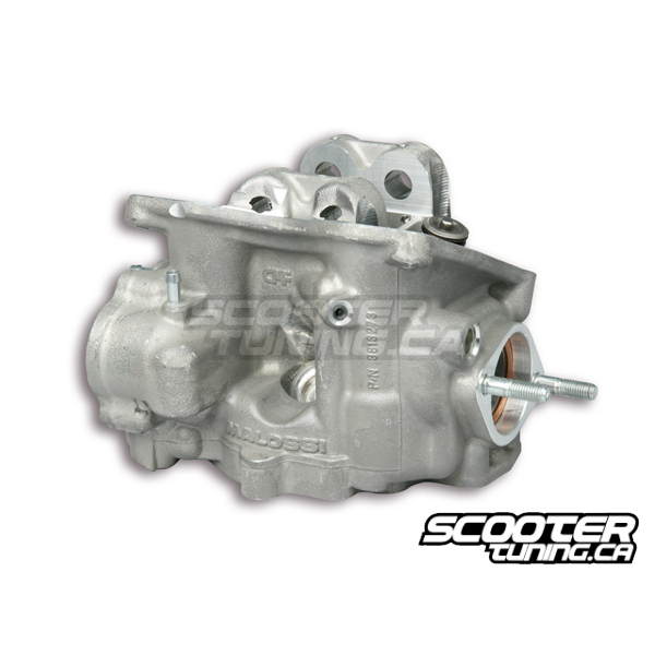 Cylinder Head For Cylinder Piaggio Liquid Cooled: Cylinder Head Malossi V4 (Piaggio 250cc)