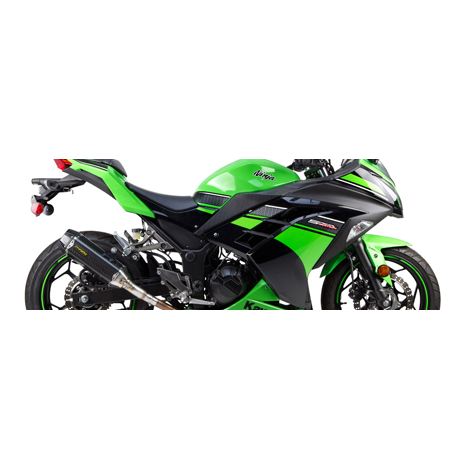 Kawasaki Ninja 300 13-15